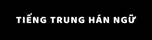 tiengtrunghanngu.com
